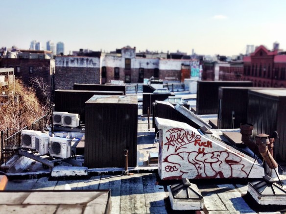 rooftop, east village, lower east side, alphebet city, nyc, new york city