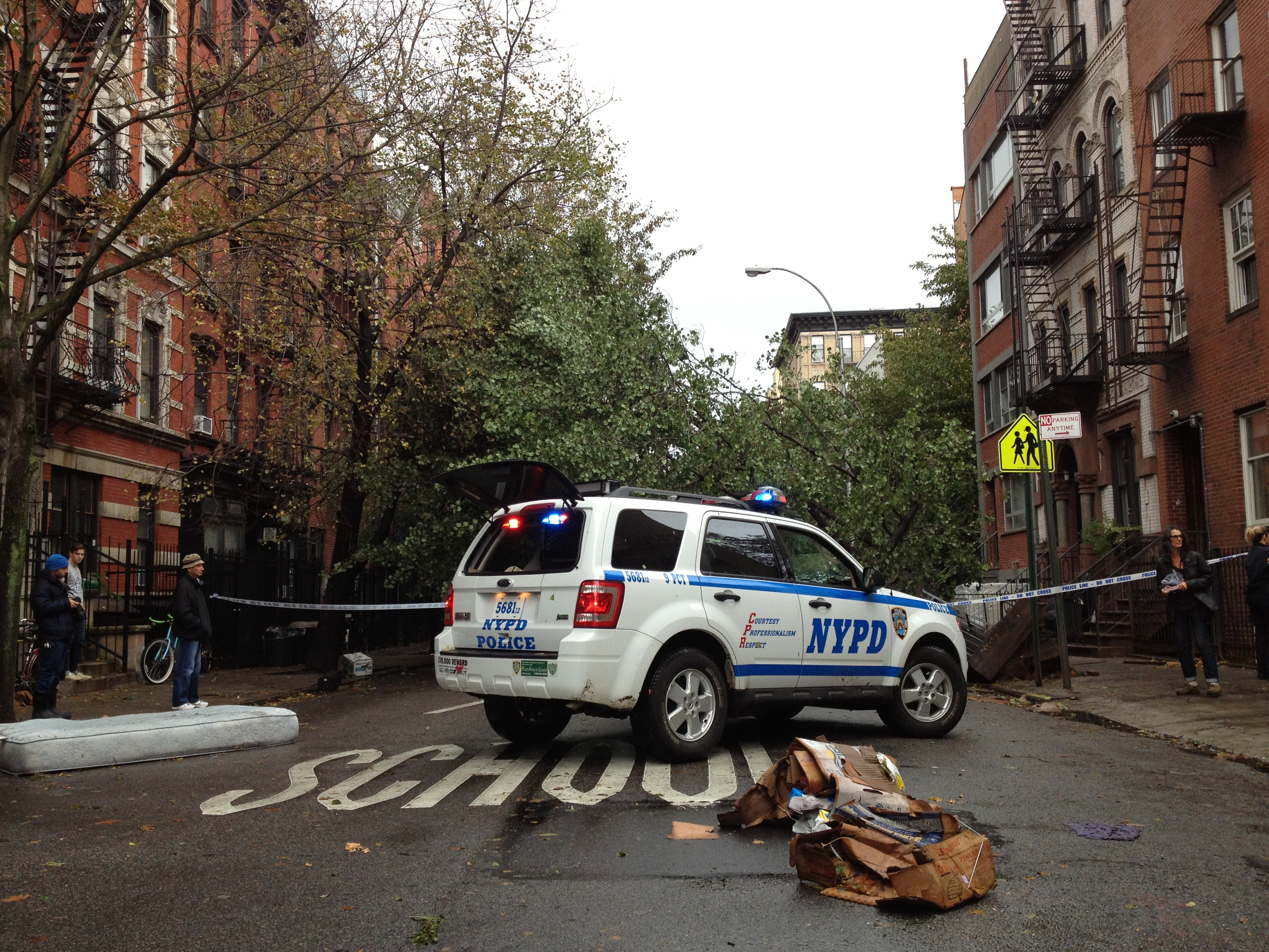 sandy_trees_down_nypd